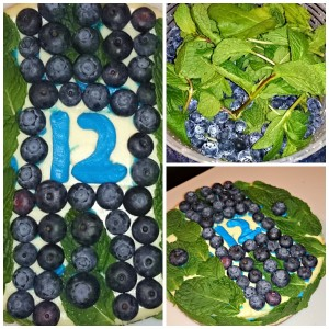 Blueberry Mint Seahawk Cheesecake